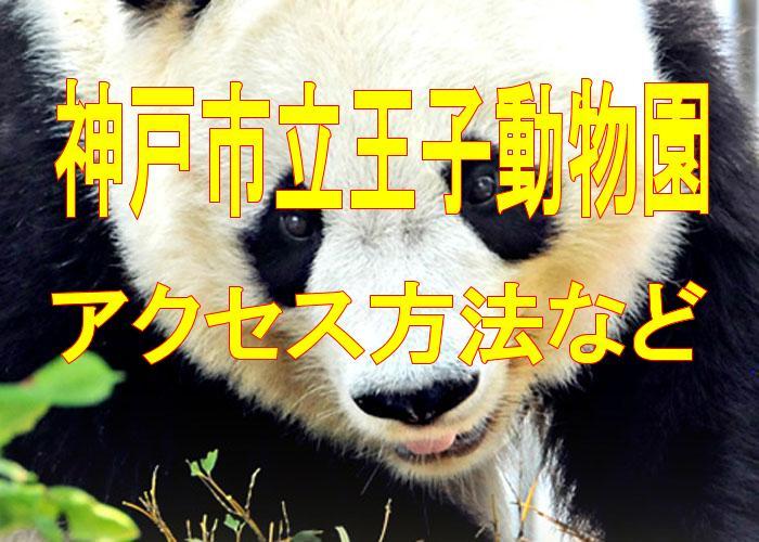 神戸市立王子動物園のアクセス方法などを解説